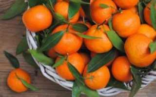 Как выбрать вкусные мандарины и отличить их от гибридов
