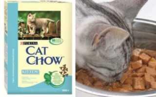 Корм «Кэт Чау» для кошек: обзор, состав, плюсы и минусы, отзывы ветеринаров и владельцев