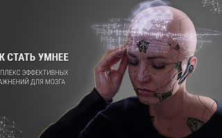 Как тренировать память взрослым людям: эффективные упражнения для работы мозга