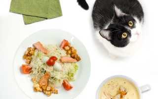 Какие продукты с новогоднего стола вредные для животных