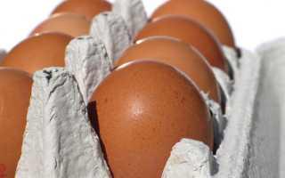 Почему русские и американцы хранят яйца в холодильнике, а европейцы нет: кто прав