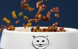 «Савара» корм для кошек: обзор, состав, ассортимент, плюсы и минусы