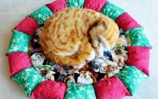 Как сделать лежанку для кошки своими руками: особенности кошачьего лежака
