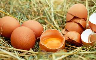 Можно ли пить сырые яйца и чем это грозит