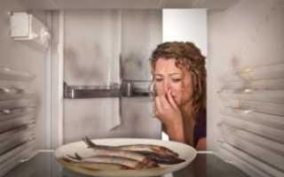 Как избавиться от запаха в холодильнике: эффективные способы убрать запах рыбы, плесени быстрые