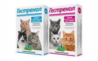 Гестренол для кошек: инструкция по применению, капли и таблетки, показания и противопоказания