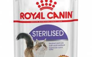 «Роял Канин» для кошек и котят, стерилизованных животных: обзор, состав Royal Canin
