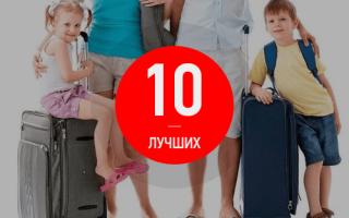 Как выбрать дорожный чемодан на колёсах хорошего качества: советы экспертов + видео и отзывы