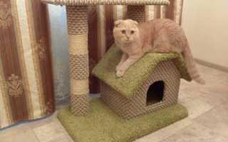 Как сделать своими руками домик для кота и кошки: виды кошачьих домов, чертежи, размеры