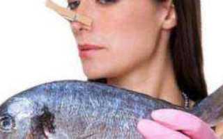 Как избавиться от запаха рыбы в квартире, на различных поверхностях, на руках