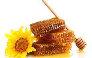 Как выбрать мёд правильно в магазине или на рынке: признаки качественного продукта