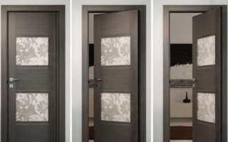 Маятниковые двери: разновидности, комплектующие, особенности установки и эксплуатации
