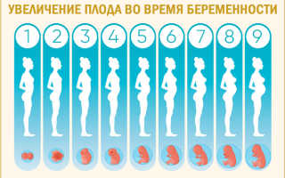 Почему нельзя спать на животе, особенно беременным женщинам