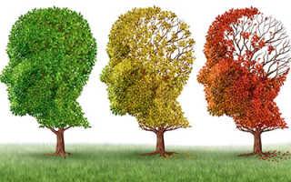 6 продуктов от болезни Альцгеймера: список с фото