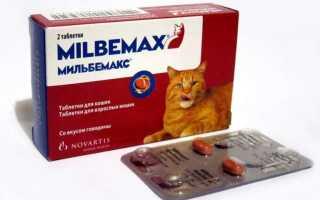 Милпразон для кошек: инструкция по применению, показания и противопоказания, побочные действия