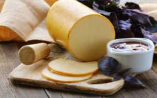 Почему сыр не плавится в духовке и микроволновке, при приготовлении пиццы и супа