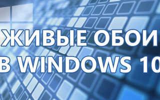 Живые обои для Windows 10 — как сделать анимированный или видео фон для рабочего стола