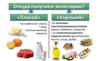 10 продуктов, повышающих уровень холестерина