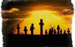 Почему на кладбище нельзя здороваться за руку: приметы и факты