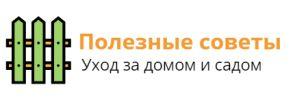Lapki-Tapki.ru